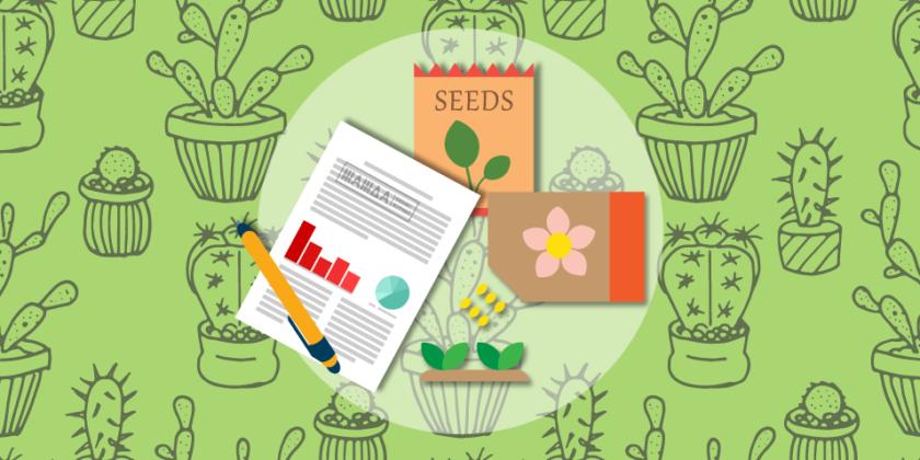 Бизнес-идея: открытие магазина цветочных семян